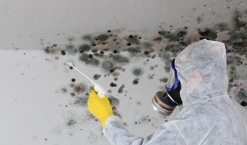 Remont mieszkania pomoże pozbyć się szkodliwej dla zdrowia wilgoci